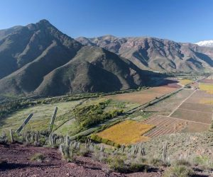 Colorido Valle del Elqui