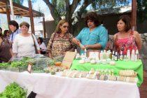 Emprendimiento femenino: Rasgos de Sol, una experiencia de éxito en Vicuña