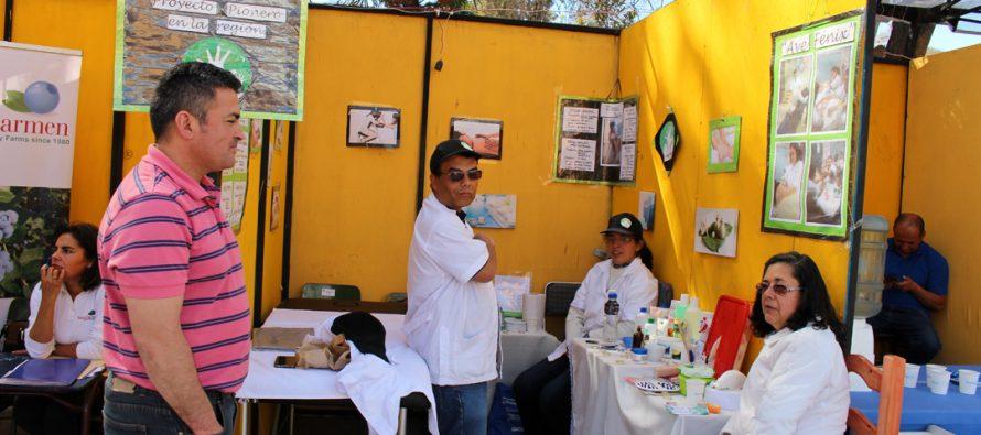 Feria laboral de Vicuña reunió diversos servicios con el fin de orientar a la comunidad elquina