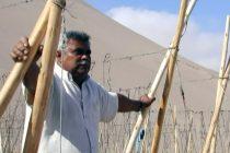 """Casa de la Cultura de Vicuña presentará documental """"El Valle de los Negros"""""""