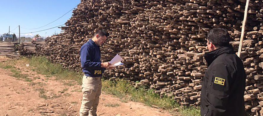 PDI aclara el robo de 10 mil palos de viña en Vicuña