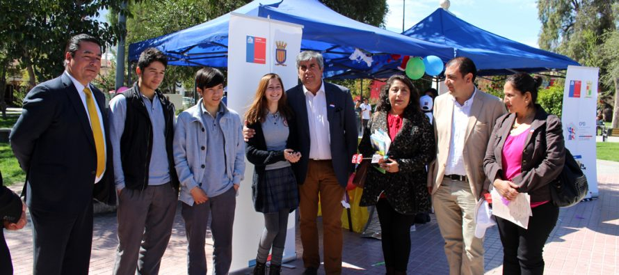 En Vicuña niños de toda la región se reunieron para dar a conocer sus derechos a la comunidad