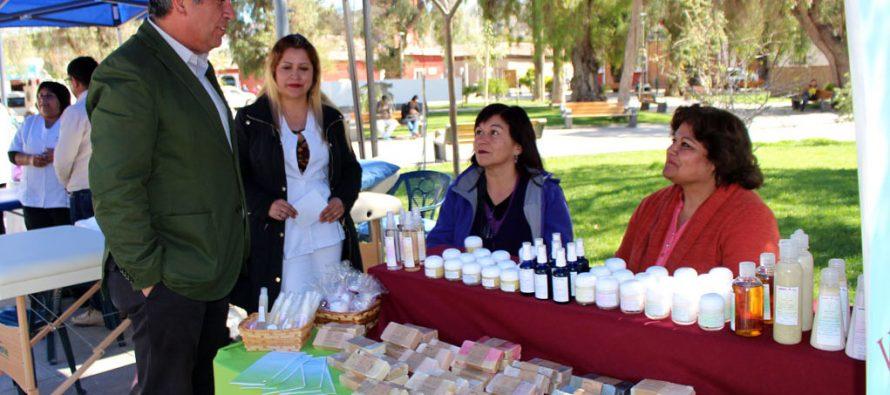 Plaza de Colores se presenta en Vicuña con una gran variedad de emprendimientos