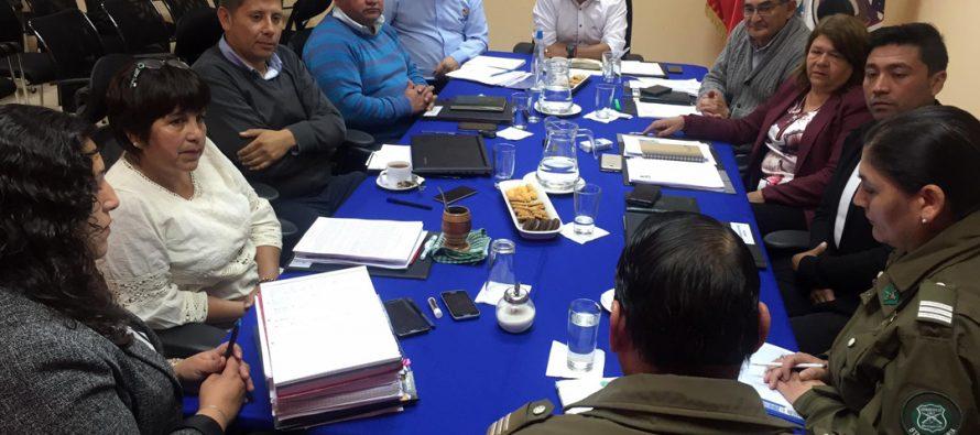 Carabineros y concejo municipal de Paihuano trabajan en la seguridad comunal