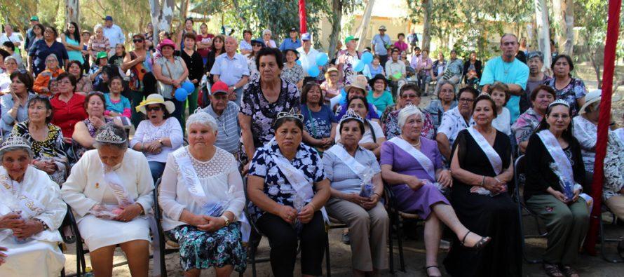 Adultos mayores de Vicuña disfrutaron de su tradicional  Pampilla en Parque Los Pimientos