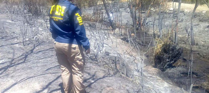 PDI investiga incendio al interior de un fundo en Pisco Elqui