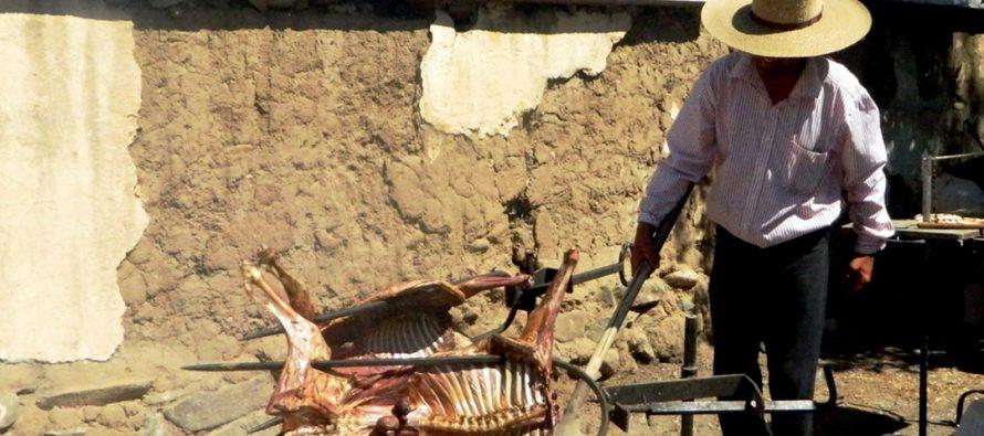 Vicuña rescata el patrimonio de la trashumancia con la 1ra Fiesta del Cabrito Elquino