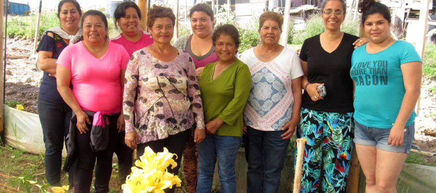 Usuarias de programa para mujeres campesinas intercambian experiencias como floricultoras en Altovalsol