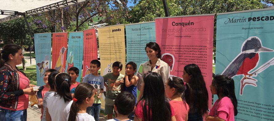 """Ministerio del Medio Ambiente exhibe en La Serena y Vicuña campaña educativa """"Conoce tu fauna"""""""