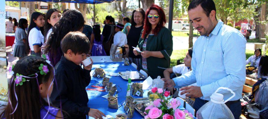 Redes CRA de Vicuña realizan acto homenaje a Violeta Parra