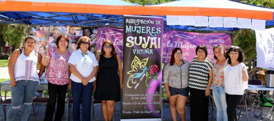Vicuña conmemorará el Día Internacional por la No Violencia hacia las Mujeres