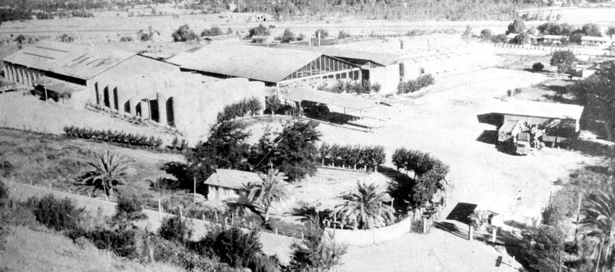 Historia de la Cooperativa Capel la que ha logrado mantenerse en el mercado nacional