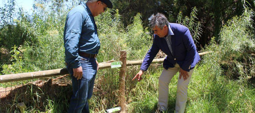 Seremi de Salud lanza Campaña de Prevención del Virus Hanta en Vicuña