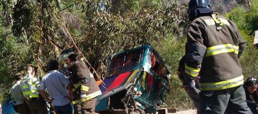 Dos buses de recorrido Valle del Elqui protagonizan choque en El Maitén