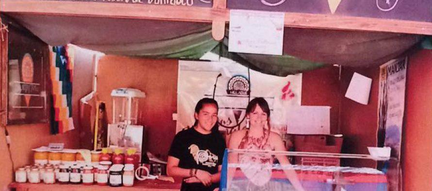 """Pallautaytambo"""" una nueva alternativa de helados en el Valle del Elqui"""