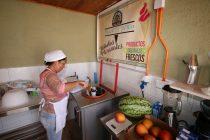 Vicuña y sus helados artesanales; una ruta de sabor, tradición e historia