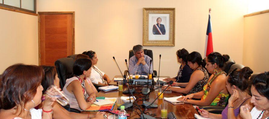 Realizan Mesa ONU Mujeres Indígenas en la comuna de Vicuña