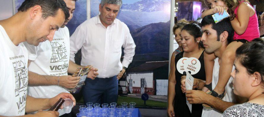 Vicuña dice presente en una nueva versión de la Fiesta del Sol en San Juan