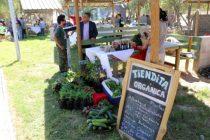 Invitan a participar de la V versión de la Feria Rural Campesina en Vicuña
