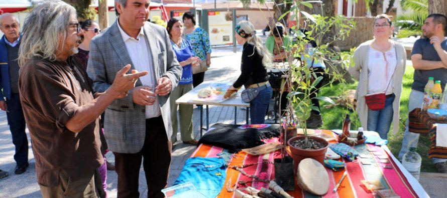 Realizarán encuentro intercultural con el pueblo Rapa Nui en plaza Gabriela Mistral de Vicuña