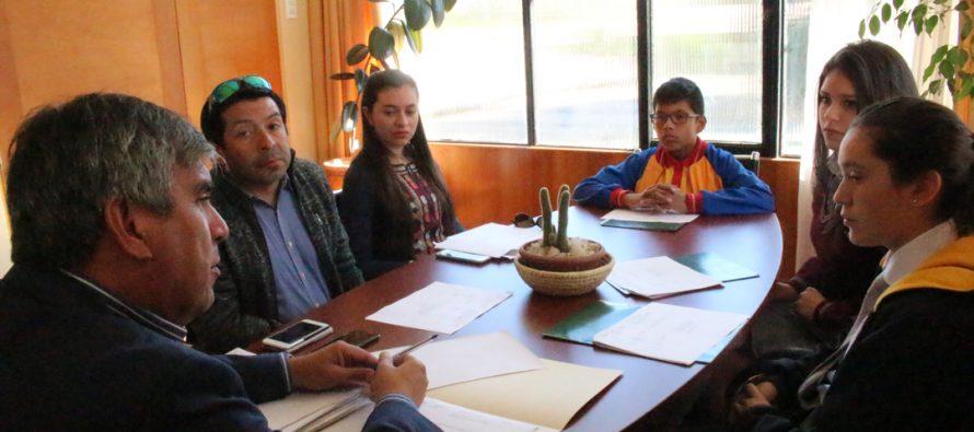 Presentan propuesta de planificación del Consejo Consultivo de la Infancia 2018 en Vicuña