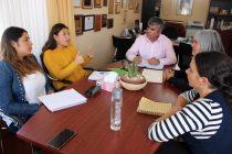 Analizan ejecución de programas orientados a las mujeres de Vicuña  para este 2018