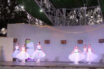 Diversas expresiones artísticas estuvieron presentes en el Día de la Danza en Vicuña