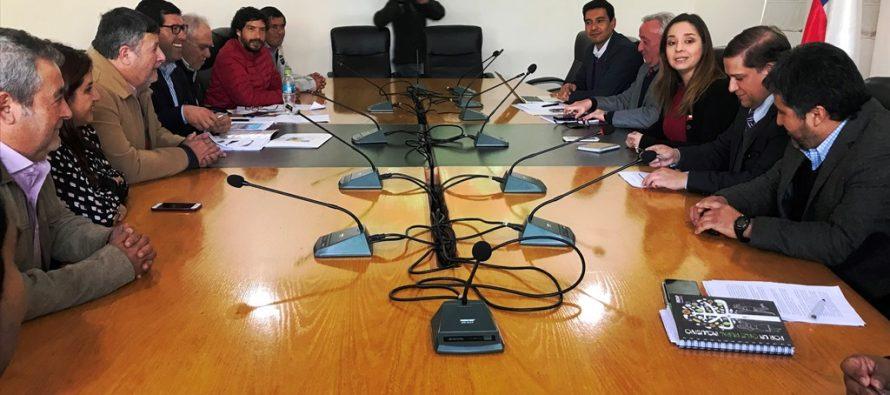 Gobierno analiza herramientas para apoyar a productores de uva de mesa de Elqui y Limarí