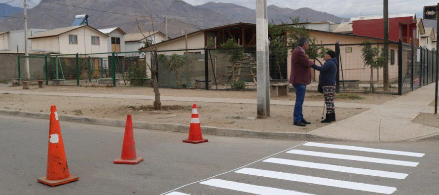Realizan pintado de señalética de tránsito en sectores urbanos de Vicuña