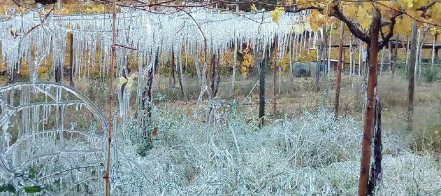 Pronostican núcleo frío en altura en la zona con heladas posteriores