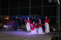 Cientos de bailarines fueron parte de un encuentro folclórico en Diaguitas