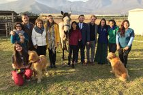 Subsecretaria de la Niñez destaca labor de la Fundación El Rosario apoyando a personas en situación de discapacidad con zooterapia