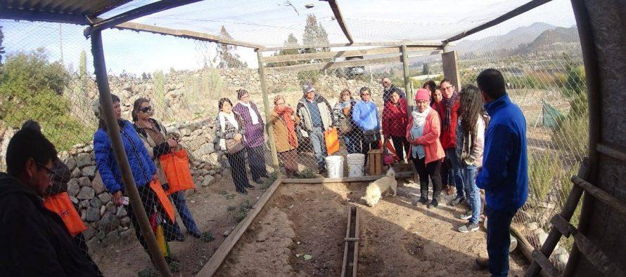 Municipio de La Serena capacita a crianceros en manejo avícola y sanitario en Cutún