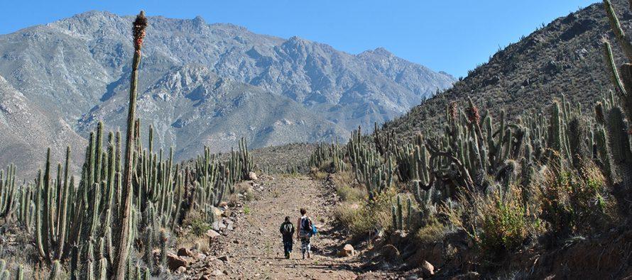 Invitan a participar de la primera Semana de la Montaña en Vicuña
