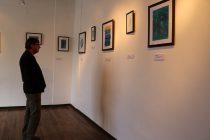 """En la Casa de la Cultura de Vicuña se presenta la exposición """"Azul II"""" de la artista visual Sandy Barrera"""