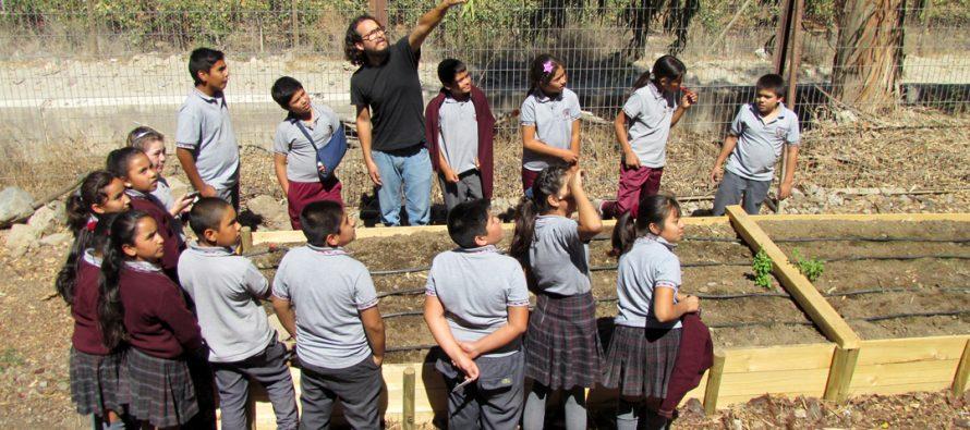"""Invitan a participar de  3era versión del """"Trafkintu"""" intercambio de semillas en escuela de Diaguitas"""