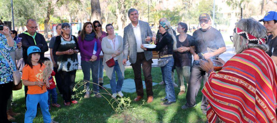 Múltiples actividades darán vida a la 2da Feria Costumbrista Intercultural de Vicuña