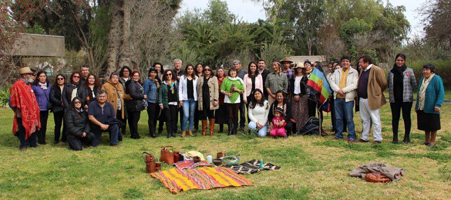 Comunidades Indígenas estudian las Propuestas de Bases Curriculares para la Asignatura de Lengua y Cultura de los Pueblos Originarios