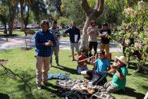 Con la presencia de pueblos migrantes se vivió la 2da Feria Costumbrista Intercultural de Vicuña