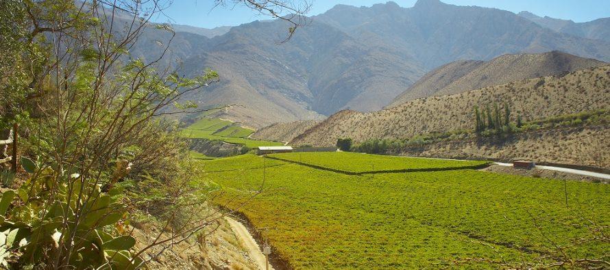 Por sólo 9 mil y 6 mil pesos Turismo Familiar ofrece 3 días de vacaciones en el Valle de Elqui