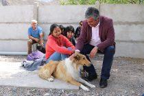 Vicuña sigue avanzando en la temática de tenencia responsable de mascotas