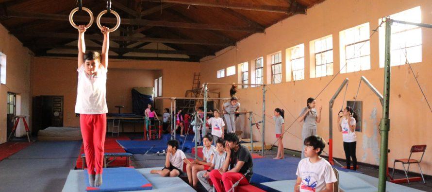 Gimnasia artística está recobrando fuerza en la comuna de Vicuña con importantes logros