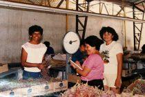 Nelly Lazo Valencia: «La labor de temporera es uno de los trabajos más sacrificados que estoy orgullosa de haberlo realizado»