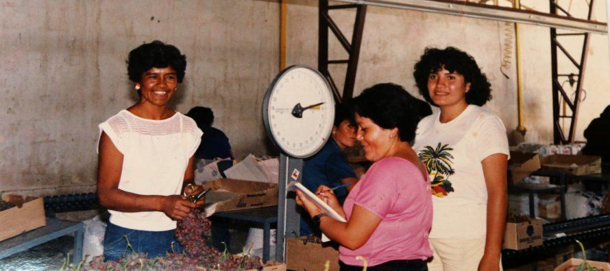 """Nelly Lazo Valencia: """"La labor de temporera es uno de los trabajos más sacrificados que estoy orgullosa de haberlo realizado"""""""