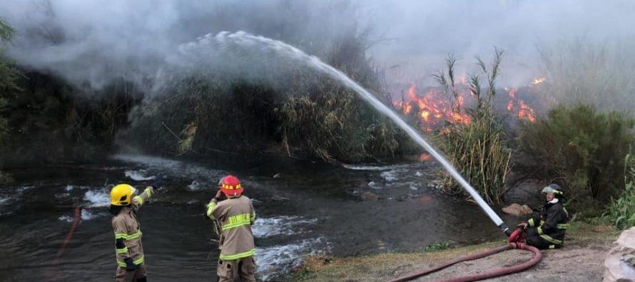 Autoridades interponen denuncia en contra de quienes resulten responsables de incendio forestal en Paihuano
