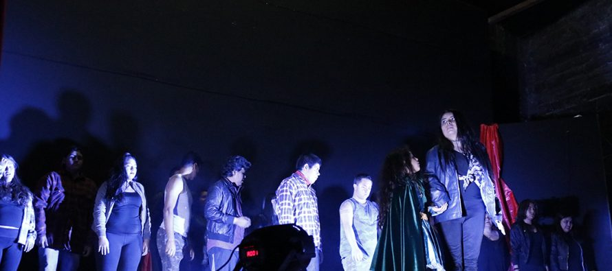 """Estudiantes de Vicuña presentaron obra """"Crepúsculo: todos somos diferentes y todos somos iguales"""""""