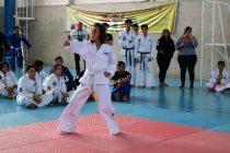 Vicuña fue sede de un nuevo torneo abierto de artes marciales
