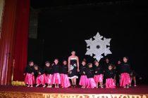 Niñas de la academia Adagio de Vicuña presentaron sus destrezas en brillante gala