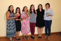 Profesionales de Servicio País finalizan trabajo de dos años en Vicuña