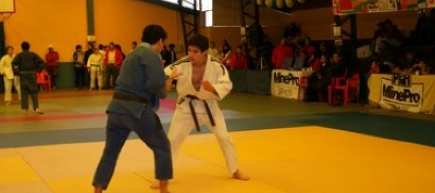 Este fin de semana se vivirá una presentación de judo en el gimnasio techado de Vicuña